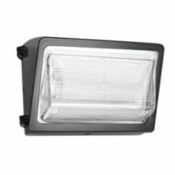 RAB® WP2LED24N/PC